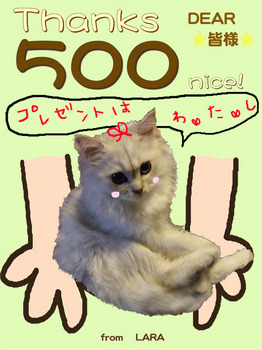 500nice.jpg