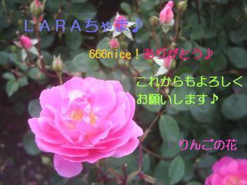 m_666nice.jpg